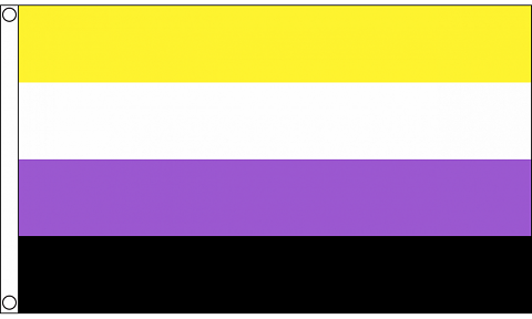 Large Non binary Flag  90 x 150 cm